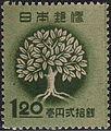 Afforestation 1948.JPG
