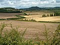 After the harvest - geograph.org.uk - 231023.jpg