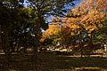 Akashi Castle37n4592.jpg