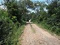 Alameda Cândido Brasil Moro - Palma - Santa Maria, foto 14 (sentido N-S).jpg - panoramio.jpg