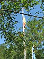 Alba Carolina Fortress 2011 - Flags-2.jpg