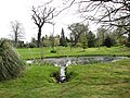 Alby Gardens - geograph.org.uk - 774367.jpg