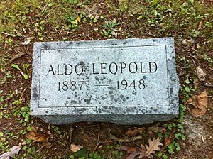 Aldo Leopold - Leopold's headstone at his family plot in Aspen Grove Cemetery in Burlington, Iowa