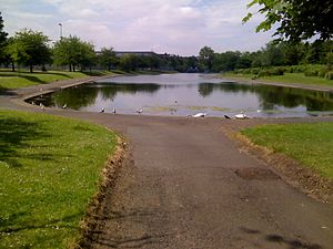 Alexandra Park, Glasgow - The pond in Alexandra Park, Glasgow