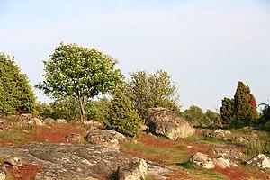 Blekinge archipelago - Image: Almö (4)