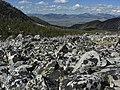 Alpine talus - Flickr - pellaea.jpg