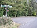 Altadavan Wood - geograph.org.uk - 156661.jpg