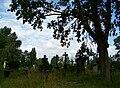 Alter Annenfriedhof.jpg