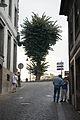 Amarante (1397903185).jpg