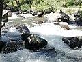 Amberd river-01.jpg
