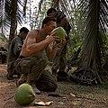 American-Soldier-Drinking-Coconut,-Binh-Dinh,-Vietnam,-1968.jpg