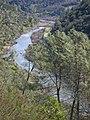 American River, Auburn, CA - panoramio - UncleVinny (2).jpg