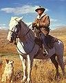 American shepherd3 (cropped).jpg