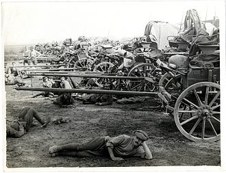 20th (Light) Division - Ammunition column carts of the 20th (Light) Division, Estaires, August 1915