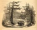 An engraving from Frederick Law Olmsted's 1856 book A Journey in the Seaboard Slave States.jpg