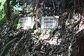 Andromeda Botanical Gardens 11.jpg