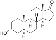 chemical structure of androsterone