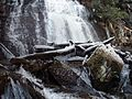 Anna Ruby Falls in winter 3-1-2010 - panoramio.jpg