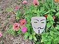 Anonomous-in the mums.jpg