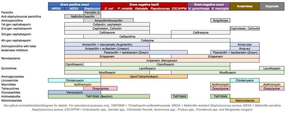 Rovamycin prosztatagyulladás kezelésére