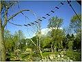 April Parc Natural Freiburg Germany - Master Landscape Rhine Valley Photography 2014 Landgut Mundenhof - panoramio (32).jpg