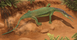 2011 in paleontology - Archeopelta arborensis