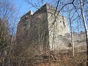Palas der Burg Neu-Aspermont von Westen