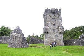 Aughnanurecastle.jpg
