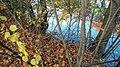 Autumn Palace 3 (182997369).jpeg