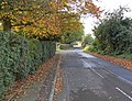 Autumn along Manor Road - geograph.org.uk - 1039846.jpg