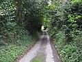 Back lane at Little Cowarne - geograph.org.uk - 1005935.jpg
