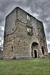 Baconsthorpe Castle from within the ruins.jpg