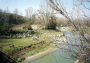 Domogled-Valea Cernei National Park - Image: Baile Herculane . Parc National vallée de la Cerna Domogled (2)
