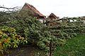 Bailleul - Dégâts causés par la tornade du 20 octobre 2013 (B38).JPG