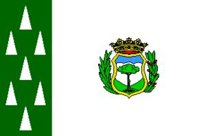 Cercedilla - Image: Bandera de Cercedilla