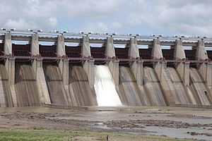 Bansagar Dam - View of Bansagar Dam from down stream