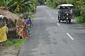 Basanti Highway - SH 3 - Matgaran - South 24 Parganas 2016-07-10 4729.JPG