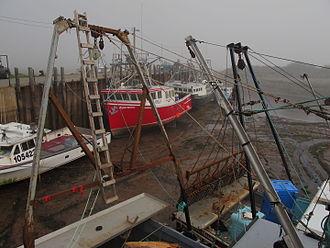 Alma, New Brunswick - Image: Bay of Fundy at low tide