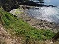 Beacon Beach - geograph.org.uk - 221938.jpg