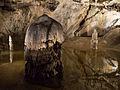 Belianska jaskyna Palmova sien stalagmity.jpg