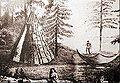 Beothuk camp.jpg