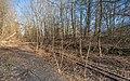 Berlin Stammbahn at Dueppel asv2021-03 img6.jpg