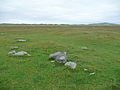 Berneray machair - geograph.org.uk - 1437399.jpg