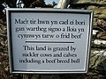 Bi-lingual warning sign at the stile leading on to NT land - geograph.org.uk - 1215057.jpg