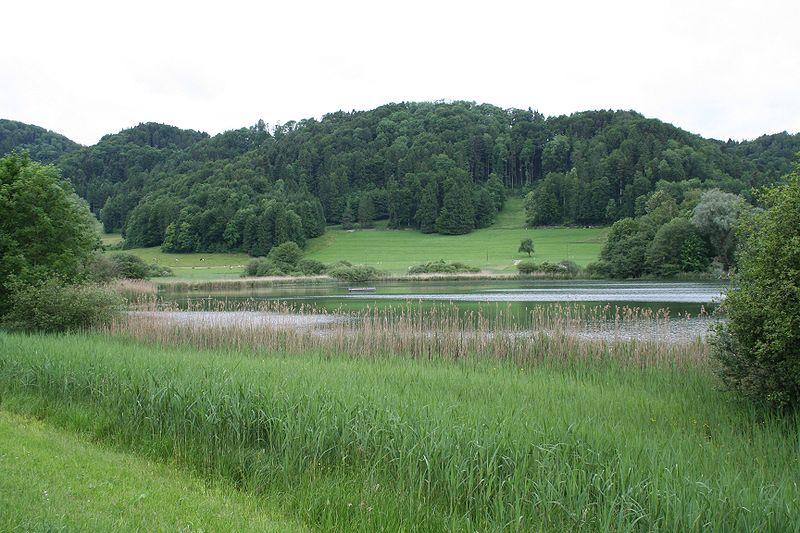 File:Bichelsee.jpg