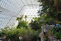 Biosphere 2015 01 18 0048.jpg