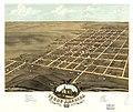 Bird's eye view of Young America, Warren County, Illinois 1869. LOC 73693377.jpg