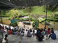 Bird Park in Kuala Lumpur (Malaysia) (44).jpg