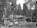 Björkö-Birka - KMB - 16001000022483.jpg