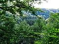 Blick aus dem Wald in den Wald (14747747363).jpg